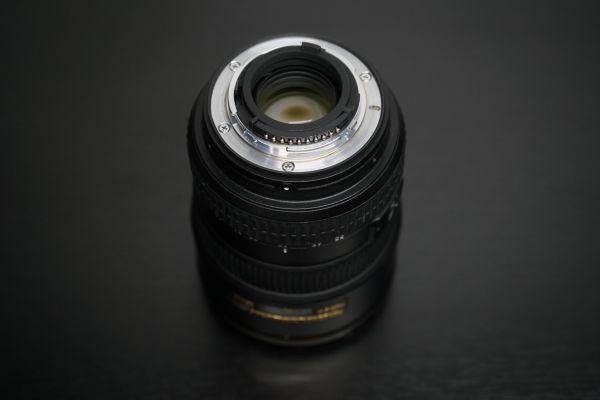 DSC03504 scaled