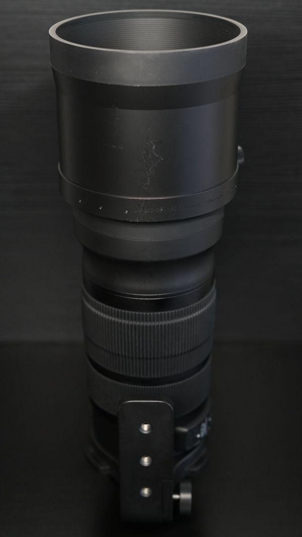 DSC07528 scaled