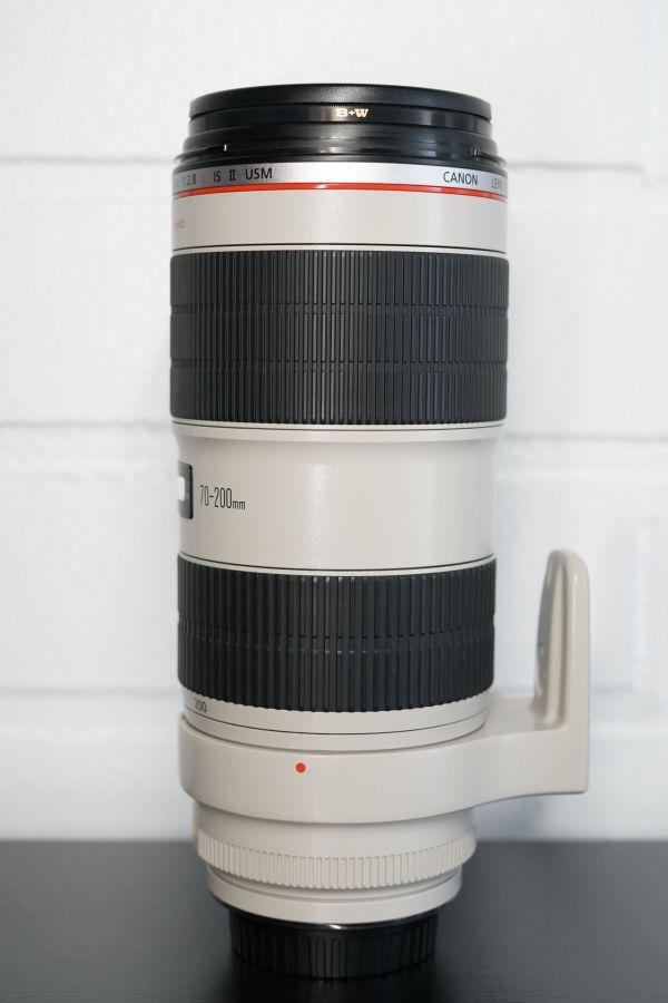 DSC06567 scaled